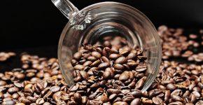 internationale-dag-van-de-koffie
