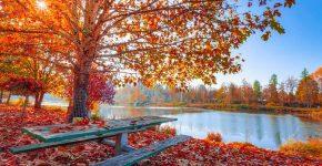 Herfst-in-Spanje