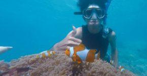 snorkelen-costa-del-azahar
