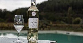 overnachten-tussen-wijngaarden